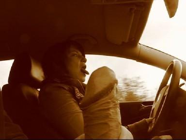 DirtyTalk im Auto mit Anhalter