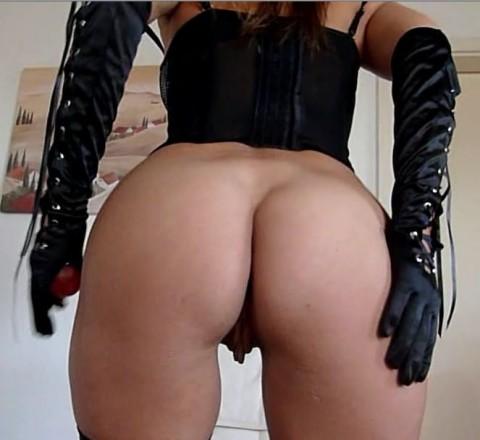 Wichs Dein Schwanz für mich !!!