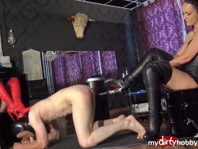 Lady Victoria Valente's Horny Dick Slave Tnaflix Porn Pics