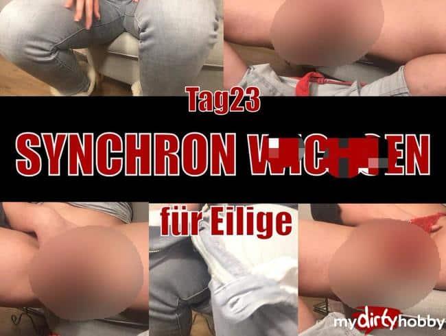 Tag 23 - SYNCHRON WICHSEN